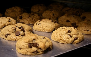 chocolate chip cookies in the oven